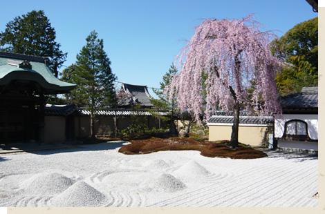高台寺・ねねの道/Kodaiji Temple・The Path of Nene