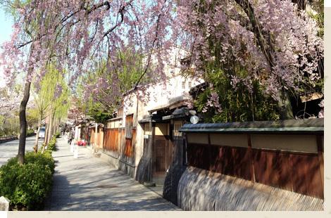 祇園白川/Gion Shirakawa